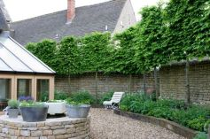 Awesome Fence With Evergreen Plants Landscaping Ideas 16