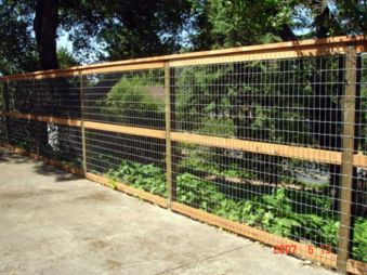 Awesome Fence With Evergreen Plants Landscaping Ideas 99