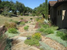 Texas Style Front Yard Landscaping Ideas 32