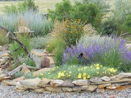 Texas Style Front Yard Landscaping Ideas 41