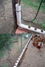Chicken feeder from pvc 14