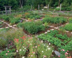 Homestead farm garden layout and design for your home 11