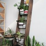 Cool Plant Stand Design Ideas for Indoor Houseplant 14