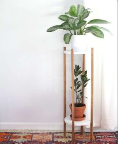 Cool Plant Stand Design Ideas for Indoor Houseplant 47