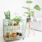 Cool Plant Stand Design Ideas for Indoor Houseplant 64