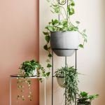 Cool Plant Stand Design Ideas for Indoor Houseplant 77