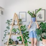 Cool Plant Stand Design Ideas for Indoor Houseplant 83