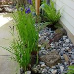 Inspiring Dry Riverbed and Creek Bed Landscaping Ideas 29