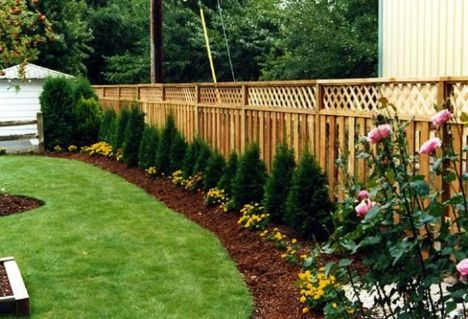 Stunning Privacy Fence Line Landscaping Ideas 80