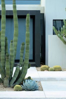 Modern and Contemporary Front Yard Landscaping Ideas 28