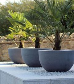 Modern and Contemporary Front Yard Landscaping Ideas 39