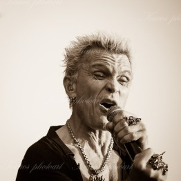 billy-idol-srf-14-8590(1)