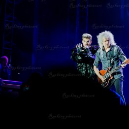 Queen, Adam Lambert srf 16-10245