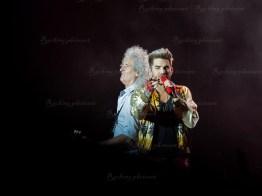 Queen, Adam Lambert srf 16-3686