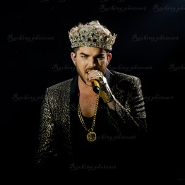 Queen, Adam Lambert srf 16-3715