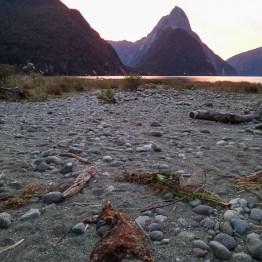 Milford Sound and a dead possum