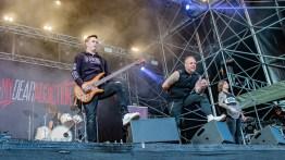 MDA rockit-17-8800