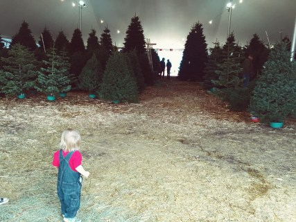 kid in christmas tree farm