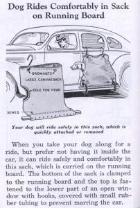 dogSack