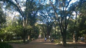 caminhada1dia_01