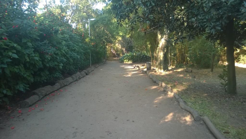 caminhada1dia_11