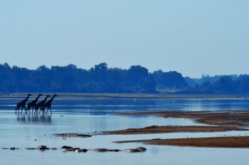 Malawi, Zambia & Botswana Tour