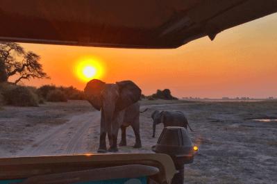 Malawi, Zambia & Botswana Tour 5