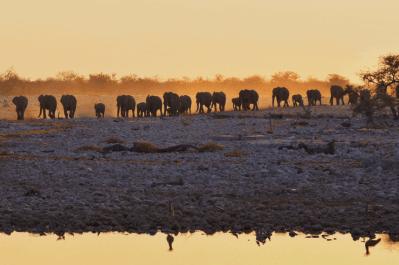 Namibia Tour (1)