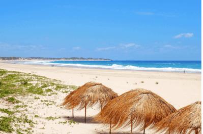 South Africa, Swaziland & Mozambique Tour 10