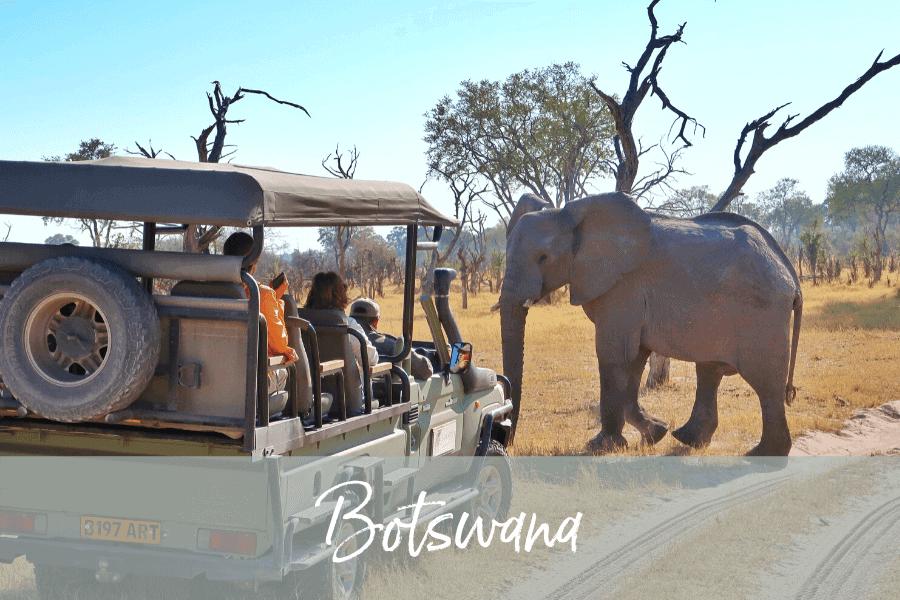 Botswana Tour