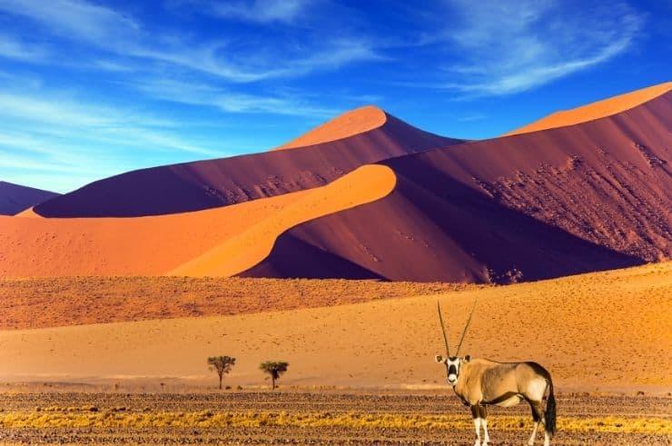 Namibia Group Tours