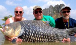 fish2-BKz