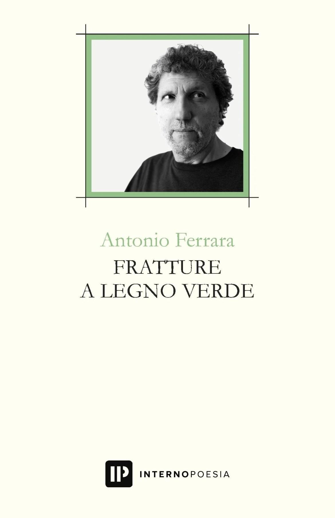 Recensione di Fratture A Legno Verde – Antonio Ferrara