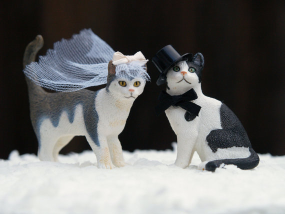 Unique Bride And Groom Cake Toppers