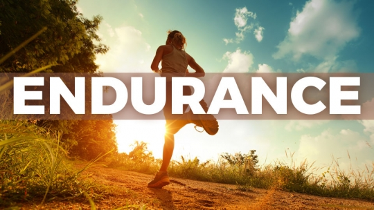 You Should Do These Exercises To Improve Your Endurance | Playo ...