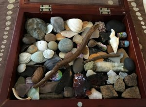 rock collection box