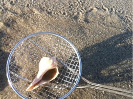 best beach sand scoop sand dipper for beachcombing and rock collectin