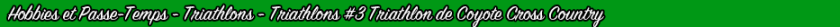 triathlon-3