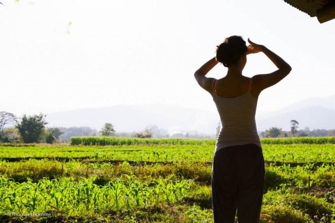 Paysage de la région de Chiang Dao
