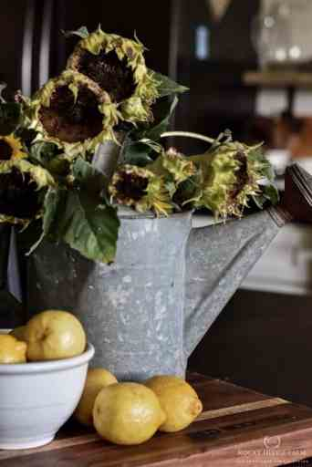 How to Dry and Preserve Sunflowers