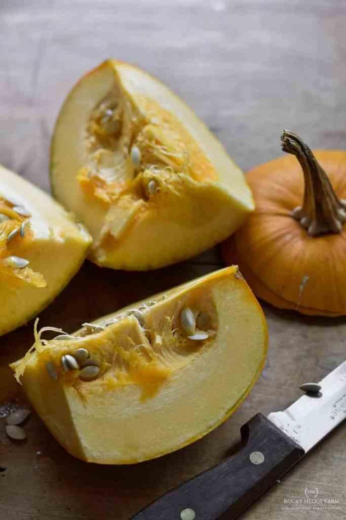 From Scratch Pumpkin Recipe