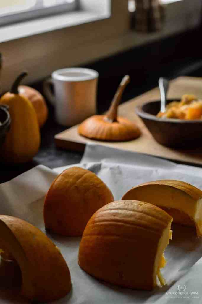 how to puree pumpkin in a blender