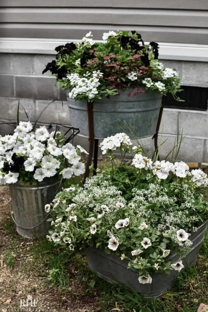 Outdoor Wash Tub Planter