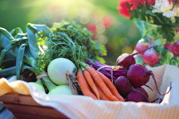 Agriculture basket beets 533360