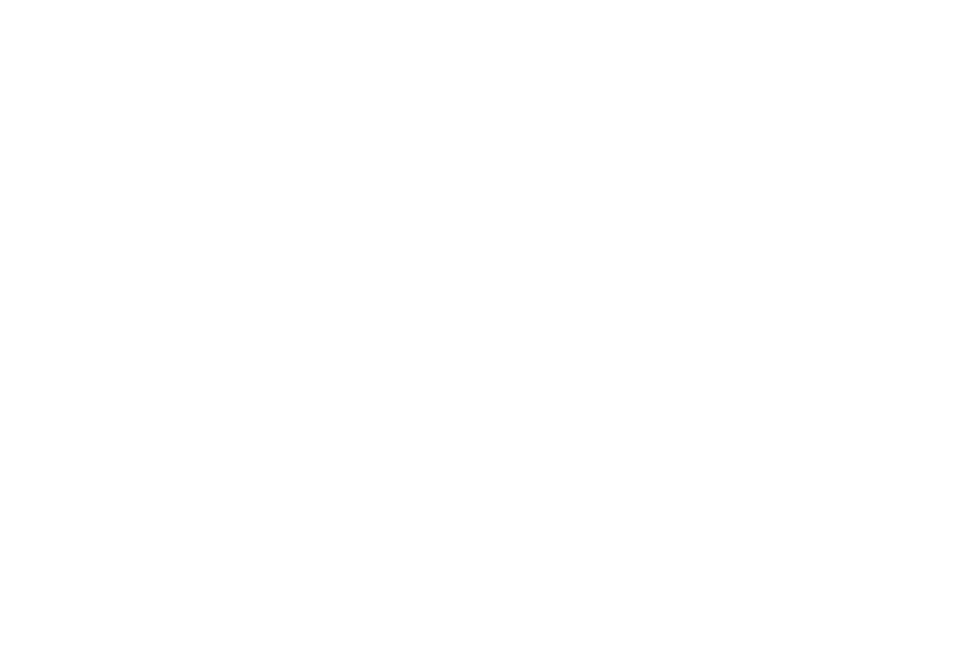 RockyMountain Logo