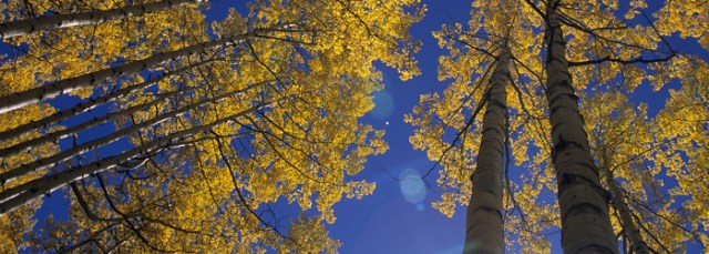 When Should You Visit Colorado Springs? | Fall