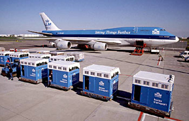 Horse transport crates in the airport
