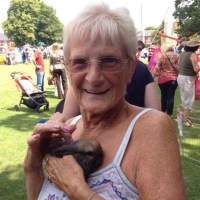It's not just the children who love the baby bunnies!