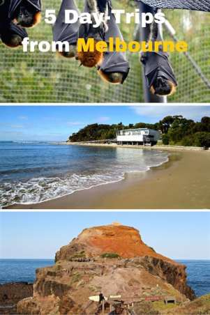 Day-trips-Melbourne-Pinterest-1