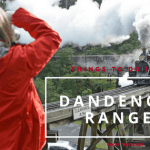 Top things to do and see in the Dandenong Ranges